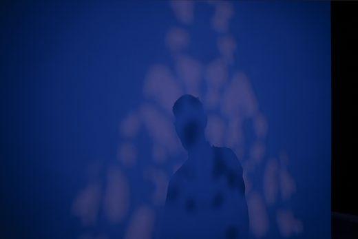 4. Erebidae / From the darkness, 2020
